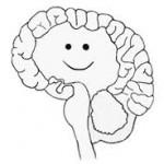 Another Hatchett Job, A Happy Brain is a Nourished Brain